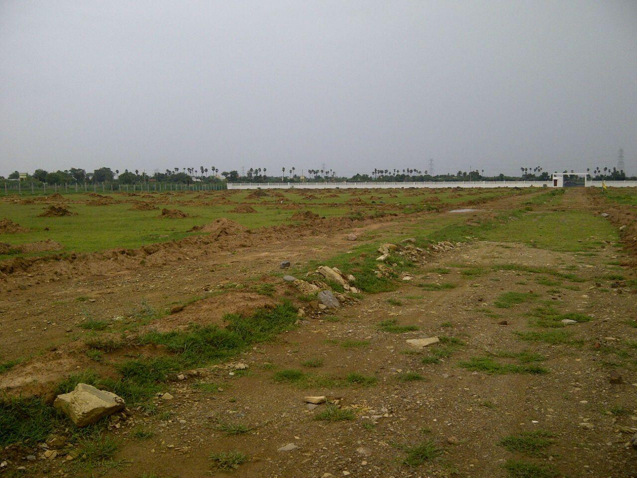 Available For Sale School Site In DLF Phase 1 Gurgaon